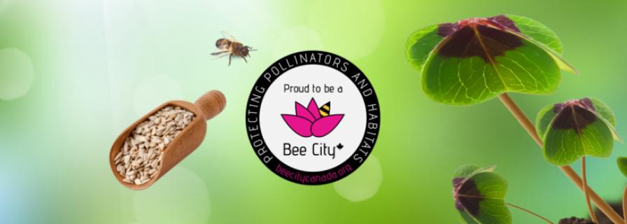 Free seeds to celebrate Pollinator Week
